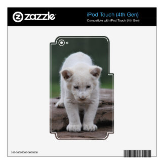 White baby lion cub series iPod touch 4G decals