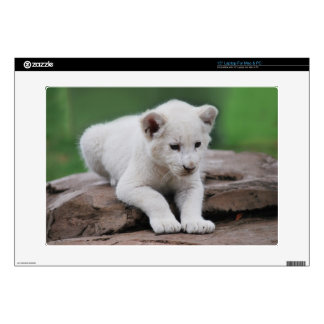 """White baby lion cub series 15"""" laptop decal"""