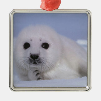 white baby seal metal ornament