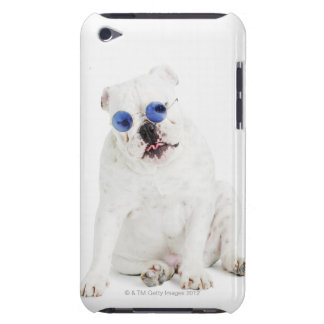 white background, white bulldog, blue tinted Case-Mate iPod touch case