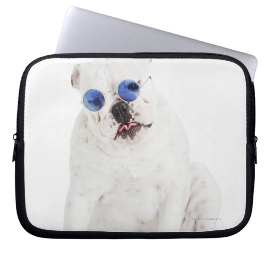 white background, white bulldog, blue tinted computer sleeve