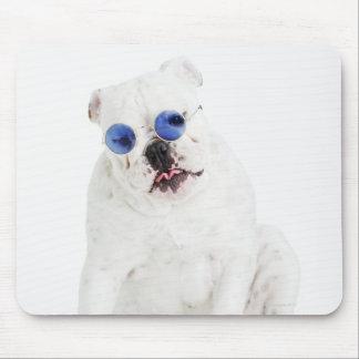 white background, white bulldog, blue tinted mouse pad