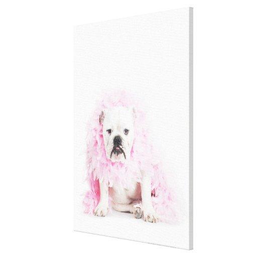 white background, white bulldog, pink feather canvas prints