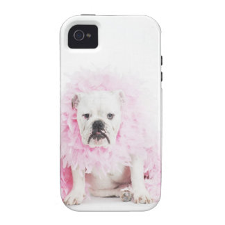 white background, white bulldog, pink feather Case-Mate iPhone 4 case