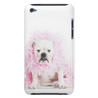 white background, white bulldog, pink feather iPod touch case