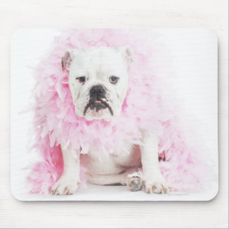 white background, white bulldog, pink feather mouse pad