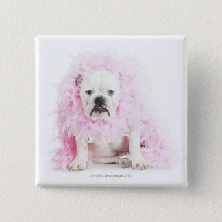 white background, white bulldog, pink feather pinback button