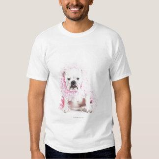white background, white bulldog, pink feather t shirt