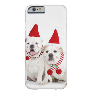 white background, white bulldogs, male dog, barely there iPhone 6 case