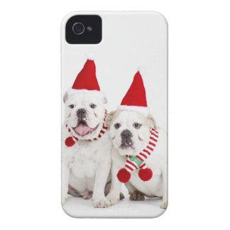 white background, white bulldogs, male dog, iPhone 4 case
