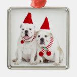 white background, white bulldogs, male dog, square metal christmas ornament