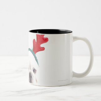 white background, white male bulldog, red coffee mugs