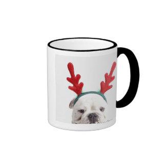 white background, white male bulldog, red coffee mug