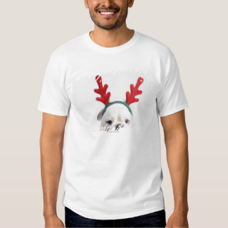 white background, white male bulldog, red t shirt