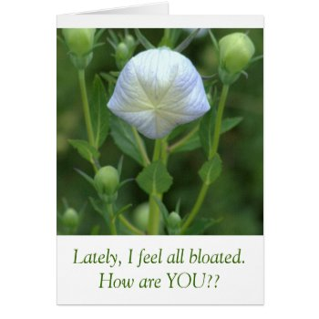 White Balloon Flower /humorous Text Card by whatawonderfulworld at Zazzle