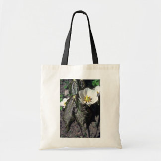white Balloon Flower, (Platycodon Grandiflorus) fl Budget Tote Bag