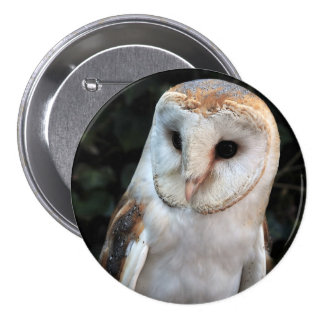 White Barn Owl Button