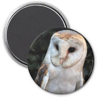 White Barn Owl 3 Inch Round Magnet