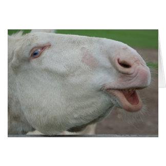White Baroque Donkey Card