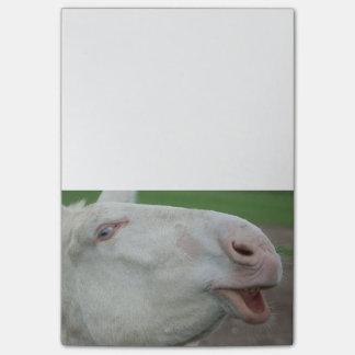 White Baroque Donkey Post-it® Notes