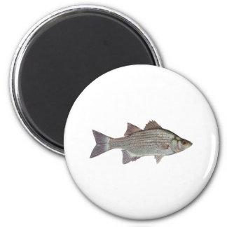 White Bass Logo 2 Inch Round Magnet