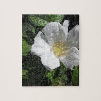 White Beach Plum Rose Jigsaw Puzzle