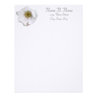 White Beach Rose Coordinating Items Letterhead