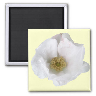 White Beach Rose Coordinating Items Magnet