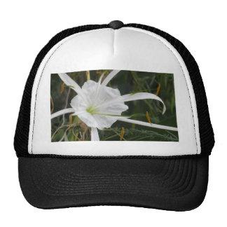 White Beach Spider Lily Lilies Flower Photo Trucker Hat