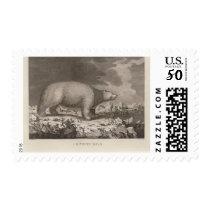 White bear in Alaska Postage
