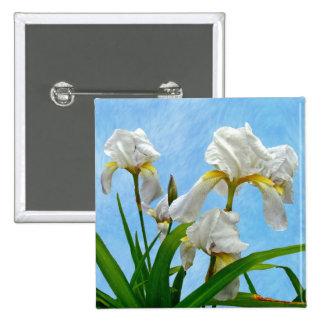 White Bearded Iris Blossoms Button