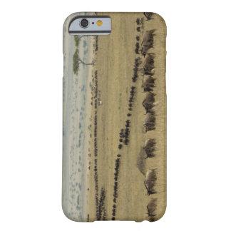 White-bearded Wildebeest or Gnu, Connochaetes 2 iPhone 6 Case
