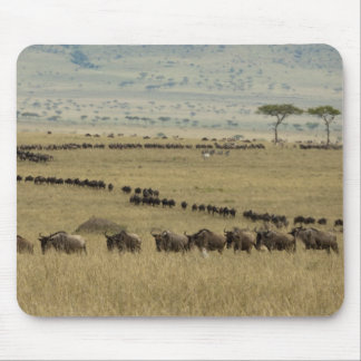 White-bearded Wildebeest or Gnu, Connochaetes 2 Mouse Pad
