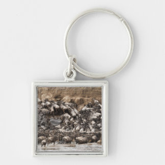 White-bearded Wildebeest or Gnu, Connochaetes Keychain