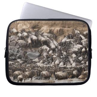 White-bearded Wildebeest or Gnu, Connochaetes Laptop Computer Sleeve