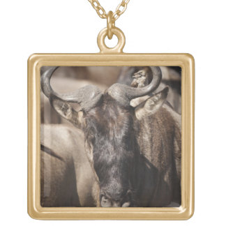 White-bearded Wildebeest with Wattled Starling Gold Plated Necklace