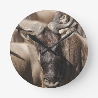 White-bearded Wildebeest with Wattled Starling Round Clock