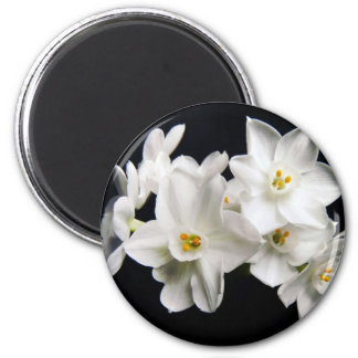 White Beauty 2 Inch Round Magnet