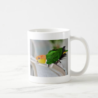 White Bellied Caique Parrot Coffee Mug
