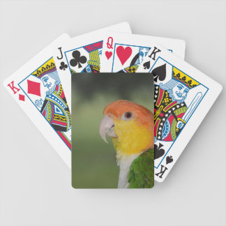 White Bellied Caique Parrot Outdoors Bicycle Playing Cards
