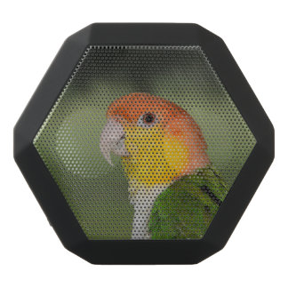 White Bellied Caique Parrot Outdoors Black Bluetooth Speaker