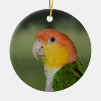 White Bellied Caique Parrot Outdoors Ceramic Ornament