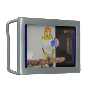 White Bellied Caique Parrot Patriotic 4th of July Belt Buckle