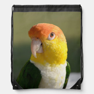 White Bellied Caique Parrot Drawstring Bags