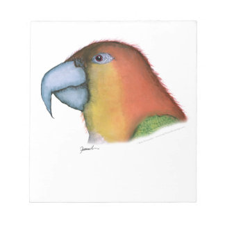 white bellied caique, tony fernandes notepad