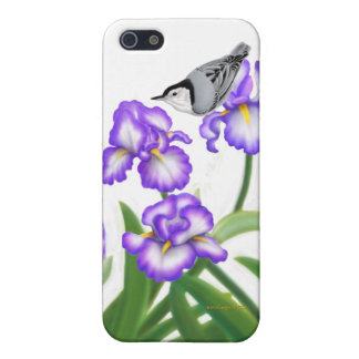 White Bellied Nuthatch on Iris Flowers iPhone Case