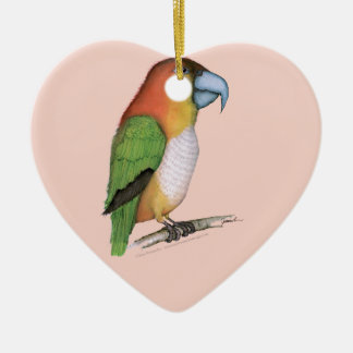 white bellied parrot, tony fernandes.tif ceramic ornament