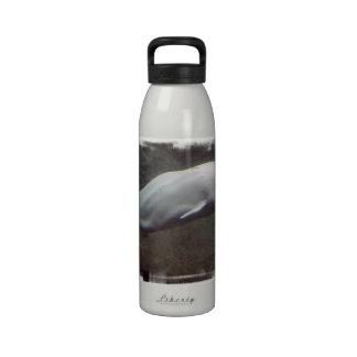 White Beluga Whales Water Bottle