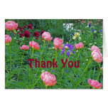 "WHITE BENCH IN PEONY GARDEN/""THANK YOU"" GREETING CARDS"
