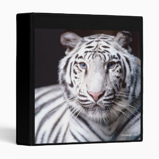 White Bengal Tiger Binder